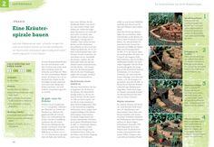 Kräuter selbst anbauen: Schritt für Schritt zum eigenen Kräuterparadies GU PraxisRatgeber Garten: Amazon.de: Renate Hudak: Bücher