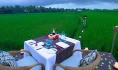 Romantic dinner amongst rice paddy fields at The Chedi Club Tanah Gajah, Ubud