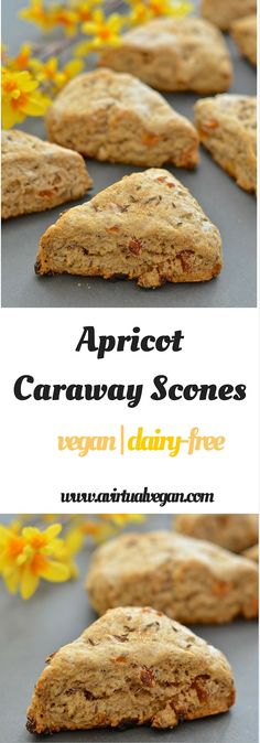 Apricot and caraway seeds might seem like a strange combination but I promise you they work beautifully together. With their crunchy exterior & dense, slightly crumbly but soft & tender interior, these Apricot Caraway Scones are utterly delicious!