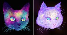 Galactic Cats Series