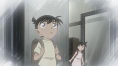 Kudou Shinichi, Mouri Ran Ran And Shinichi, Kudo Shinichi, Heiji Hattori, Pokemon, Gosho Aoyama, Detective Conan Wallpapers, My Childhood Friend, Cute Animal Photos, Magic Kaito