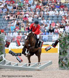 211 Best Stadium Jumps Images Equestrian Horse Stalls