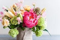 Daisies: If you feel like being joyous or festive, have a Flower Delivery…