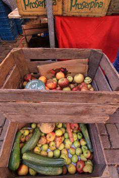 Noordmarkt, organic food market.