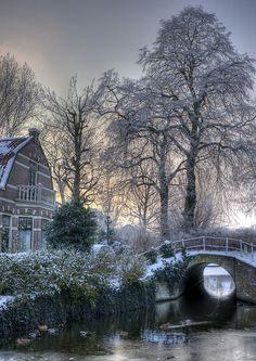 """Alkmaar - Snowy Dutch view for the Clarissenbuurt""  --  [Photograph by klaash63 (Klaas Heiligenberg) - January 16 2010 - De Hoef, Alkmaar, North Holland, Netherlands]'h4d'121025"