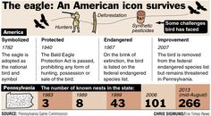 The bald eagle makes a comeback in Pennsylvania.