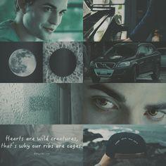 edward cullen❣️ what's your favorite character in twilight? Edward Cullen, Edward Bella, Bella Swan Aesthetic, Gray Aesthetic, Twilight Jokes, Twilight Book, Twilight Wolf Pack, Robert Pattinson Twilight, Twilight Breaking Dawn