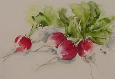 les radis (Martine CHAVENT (peintre aquarelliste))