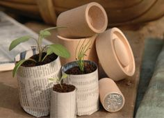 Eco pot maker- Run out of seedling pots? Simple, grab some news paper and this nifty little pot maker. You can make 3 different sizes and since the pots are completely organic, just plant as is. Sutton Seeds, Paper Pot, Shops, Plastic Pots, Maker, Garden Gifts, Garden Accessories, Potted Plants, Small Plants