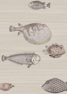 fornasetti | Acquario