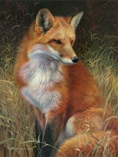 This counted cross stitch pattern of a Red Fox was designed from the beautiful artwork of Joni Johnson Godsy. Original image copyright of Joni Johnson Godsy and Cypress Fine Art Licensing. Only full cross stitches are used in this pattern. Wildlife Paintings, Wildlife Art, Animal Paintings, Animal Drawings, Vida Animal, Especie Animal, Art Fox, Animals Beautiful, Cute Animals