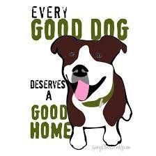pitbull rescue - Google Search