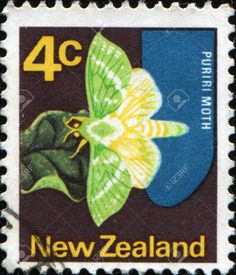 butterflies on postage stamps : NEW ZEALAND - CIRCA 1970: A stamp printed in New