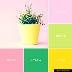 I can't be-leaf summer is over. I plan(t) on still doing bright color palettes though. Website Color Palette, Spring Color Palette, Green Colour Palette, Green Colors, Color Harmony, Color Balance, Color Schemes Design, Design Seeds, Color Stories