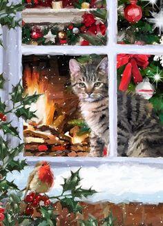 Tabby Cat watching Robin