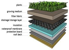 Green roof structural design