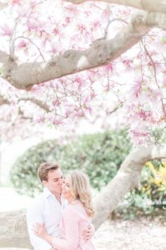 Surrounded by pretty pink petals: http://www.stylemepretty.com/washington-dc-weddings/2015/10/06/elegant-washington-d-c-engagement-session/ | Photography: Hieu Pham - http://www.hieuphamphotography.com/