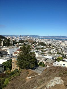 Tank Hill in San Fran.. Look at the view. Heard it is one of the best places to get the whole view of the city.