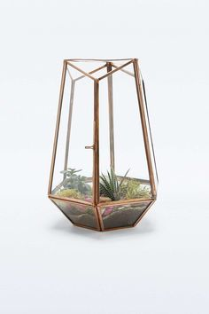 Shop Urban Grow Open Top Copper Terrarium at Urban Outfitters today. We carry all the latest styles, colours and brands for you to choose from right here. Terrarium Diy, Terrarium Wedding, Room Inspiration, Interior Inspiration, Urban Home Decor, Urban Outfitters, Living Room Plan, Copper Wedding, Room Goals