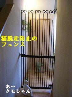 猫様仕様の家 - こはる日和.