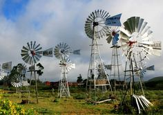 Windmills-Cool unknown facts about South Africa South Africa Facts, National Geographic Travel, Covered Bridges, My Land, Countries Of The World, Art And Architecture, Continents, Wonderful Places, Windmills