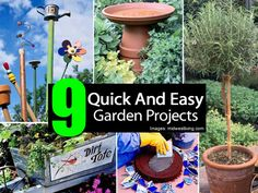 9 garden projects
