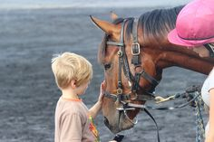 The winner of this week's summer holidays themed competition is Alex Greaves from Manurewa with this lovely photo of Alex's nephew meeting some race horses during the school holidays. He wants to be a jockey and he's starting the right way!