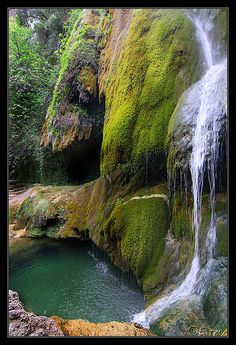 Waterfall and moss, Escaules - Catalonia, Spain Places To Travel, Places To See, Travel Around The World, Around The Worlds, Spain And Portugal, Spain Travel, Nature Pictures, Vacation Spots, Travel Inspiration