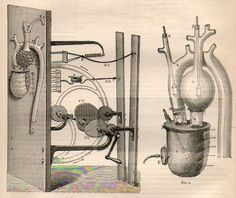 A Note on Graphical Display and a Mechanical Heart, 1876