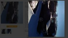 How to sell your fox