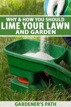Should you lime your lawn this year Find out how this natural conditioning agent may be beneficial Understand the difference between calcitic and dolomitic varieties Lear. Garden Soil, Garden Care, Lawn And Garden, Lime For Lawns, Gardening For Beginners, Gardening Tips, Gardening Magazines, Gardening Books, Lawn Soil