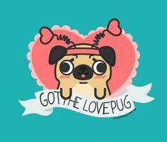 Mr.Bosco the Pug : Photo