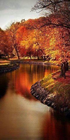 Photography nature autumn scenery 39 New Ideas Fall Pictures, Nature Pictures, Pretty Pictures, Autumn Photos, Beautiful World, Beautiful Places, Amazing Places, Autumn Scenes, Belle Photo