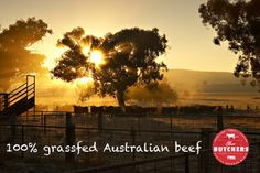 All natural. We supplies the highest quality home grown and farm fresh meat directly from Australia!