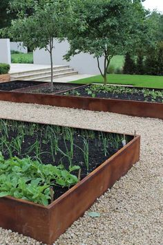 Trend Alert Hardscaping with Corten Steel Gardenista Edible garden beds edged by rusted steel in a private garden by UKbased Wilson McWilliam Studio Building A Raised Garden, Raised Garden Beds, Raised Beds, Raised Patio, Metal Garden Beds, Sloped Garden, Metal Beds, Garden Boxes, Raised Vegetable Gardens