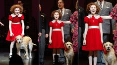 Love the New Annie. The updated dress is adorable. Can't wait to see Lilla Crawford live.