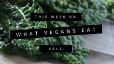 Kale Fruit Wraps — The Practical Plan