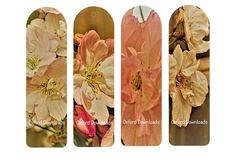 Shabby Chic Floral Photography Printable Bookmarks | Craftsy