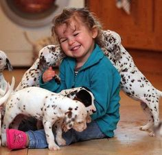 the Dalmatian is usually reserved towards unknown people and acts scrappy toward strange dogs, it is good around horses and other pets. may also be too lively and active for young children. Dogs And Kids, Animals For Kids, I Love Dogs, Animals And Pets, Baby Animals, Dogs And Puppies, Cute Animals, Doggies, Dalmatian Puppies