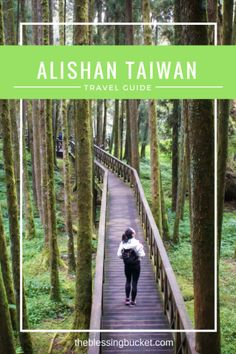 Alishan: Best sunrise in Taiwan #taiwan #travelguide