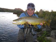 Another big Utah brown trout.