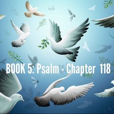 "Psalm 118  Theme: Confidence in God's eternal love. God's love is unchanging in the midst of changing situations. This gives us security.  Verses highlighted:1, 6, 8, 17, 22, 26, 28 (excerpt) ""Give thanks to the Lord, for he is good; his love endures forever. The Lord is with me; I will not be afraid...It is better to take refuge in the Lord...The stone the builders rejected has become the cornerstone...You are my God, and I will praise you... And exalt you.""…"
