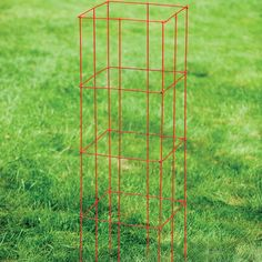 Collapsible Tomato Cage, set of 3 - White Flower Farm Vegetable Soup Healthy, Tomato Vegetable, Healthy Vegetables, Freezing Tomatoes, Growing Tomatoes, Growing Vegetables, Tomato Pie, Tomato Cages, Tomato Benefits
