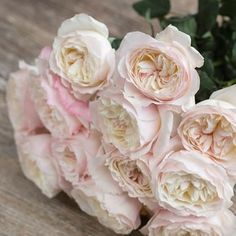 Rose Keira - each rose is subtly different, blending blush pinks & cream - a beautiful fragrance - typically David Austin ! (approx. 100 petals)
