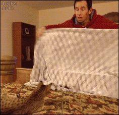 Merasakan 6 Hal Ini di Rumah? Hati-hati Tempat Tinggalmu Berhantu - http://wp.me/p70qx9-2R9