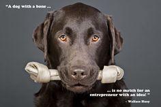 ❤️Hit That Share Button To Motivate Your Friends & Family❤️ ▬▬▬▬▬▬▬▬▬▬▬▬▬▬▬▬▬▬▬ #MondayMotivation #MotivationMonday #quotes #quoteoftheday #motivationalquotes #PuppyLove #PawPrints #Happiness #Lab #LabradorRetriever #LancasterPuppies www.LancasterPuppies.com Puppy Quotes, Lancaster Puppies, Puppies For Sale, Labrador Retriever, Adoption, Share Button, Humorous Quotes, Words, Motivationalquotes