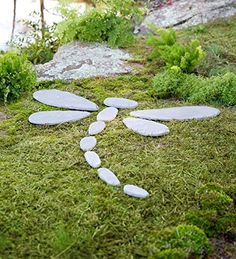 Decorative Stones Dragonfly Garden Accent Plow & Hearth https://www.amazon.com/dp/B00URM6FW8/ref=cm_sw_r_pi_dp_x_nNhczb2VJJ3CH