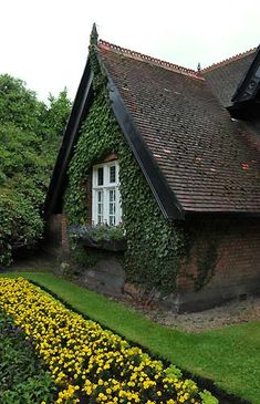 A cute little cottage in Dublin, Ireland. Paint wood trim black & deep green, plant Boston ivy to grow on side of brick house Cottage Living, Cozy Cottage, Cottage Homes, Cottage Style, Little Cottages, Cabins And Cottages, Little Houses, Fairytale Cottage, Irish Cottage