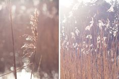 MAGICAL MOMENTS // about me, my camera and creating magical moments..