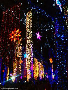 Ayala Christmas Lights by saiza-chan.deviantart.com